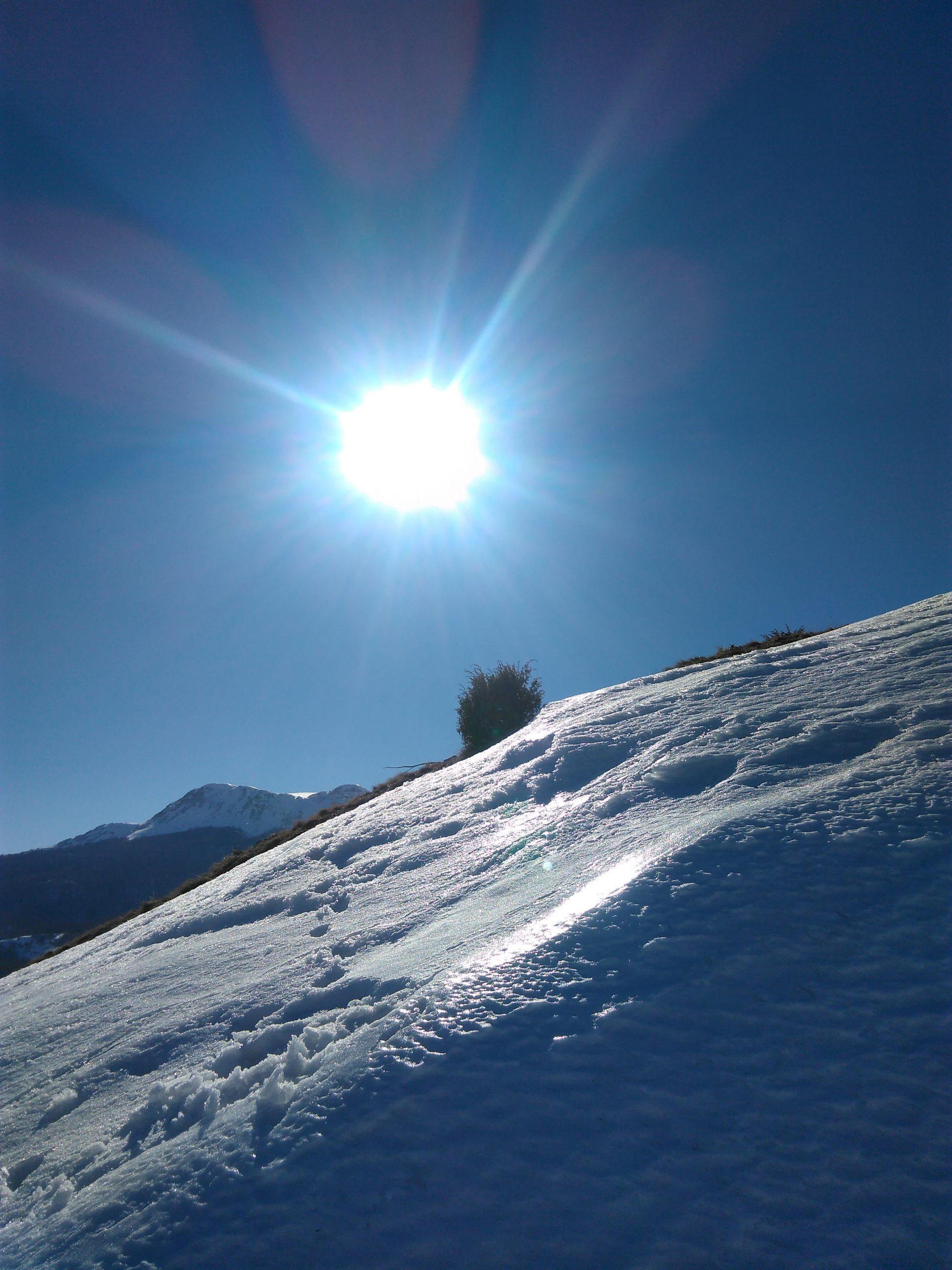 Eisdrache Sonne